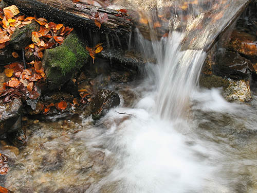 kidder-twp-autumn-stream